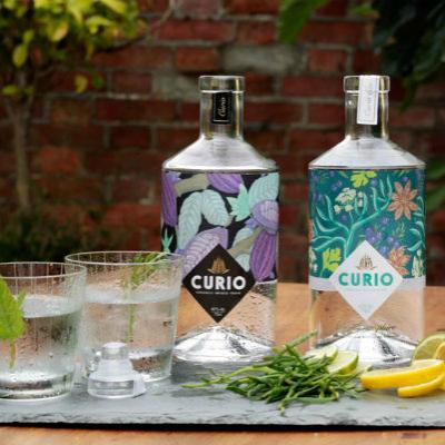 Curio Spirits Gin Bar
