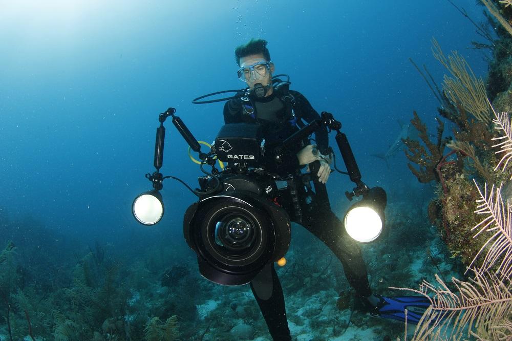Shark Bay Films